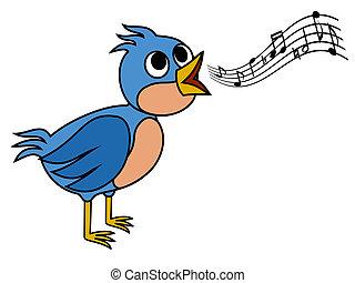 oiseau chant