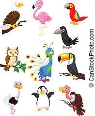 oiseau, dessin animé, collection