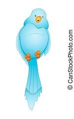 oiseau, dessin animé