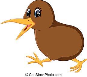 oiseau kiwi, grand plan
