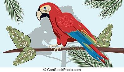 oiseau, scène, sauvage, exotique, jungle, perroquet