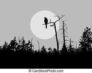 oiseau, silhouette, vecteur, arbre