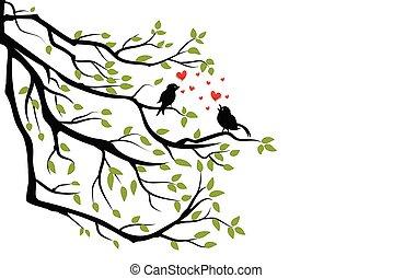 oiseaux, branche, arbre, amour