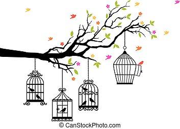 oiseaux, gratuite, vecteur, cages oiseaux