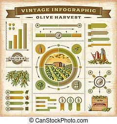 olive, vendange, infographic, récolte
