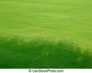 ombre, football, terrain