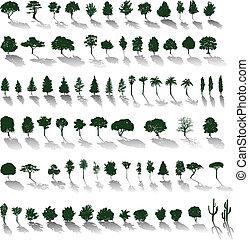 ombres, vecteur, arbres