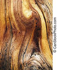 ondulé, grain bois
