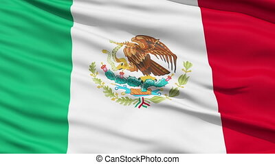 onduler, drapeau national, mexique