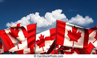 onduler, drapeaux, canadien