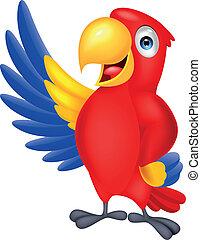 onduler, mignon, macaw, oiseau