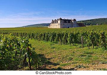 or, de, bourgogne, cote, clos, chateau, du, vougeot