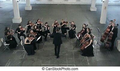 orchestra., musicien, salle, symphonie, violon, jouer