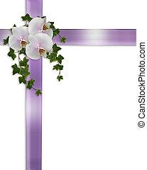 orchidées, blanc, lierre, frontière