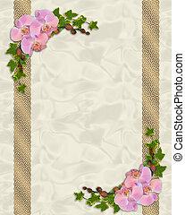 orchidées, rose, lierre, frontière