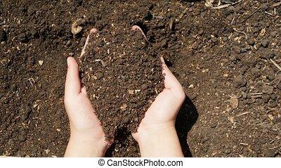 organing, sol, mains, vidéo, bed., gens, tenue, fertilisé, terrestre, agriculture, concept, jardin, croissance, fonctionnement, closeup, femme
