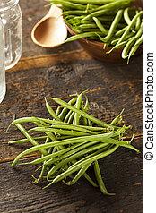 organique, francais, cru, haricots verts, frais