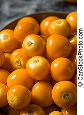 organique, orange, gooseberrries, cru
