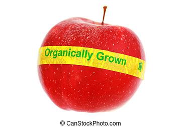 organique, pomme, mûre, foyer peu profond, isolé, white., label., rouges, dof