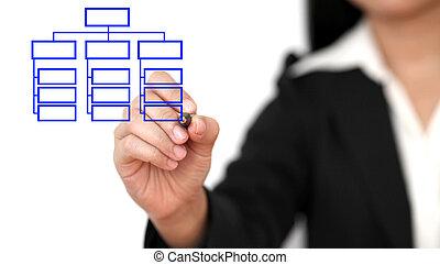 organisation, dessin, business, diagramme