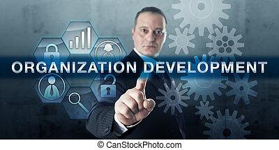 organisation, entrepreneur, pousser, développement