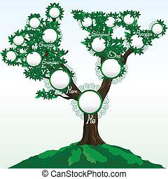 ou, arbre, illustration, noms, endroit, famille, vecteur, photos