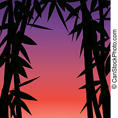 ou, coucher soleil, levers de soleil, forêt bambou