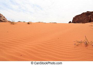 oued, jordanie, dune, désert, rhum