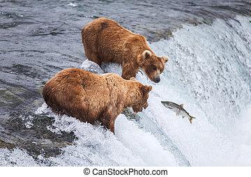 ours, alaska