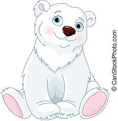 ours blanc, séance