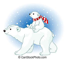 ours, polaire, bébé, maman