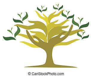 ouvert, arbre, mains