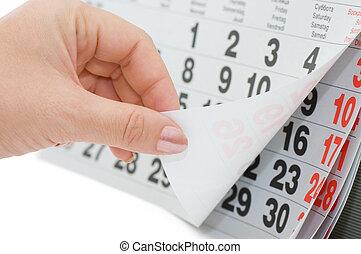 overturns, fond, calendrier, isolé, feuille, main, blanc
