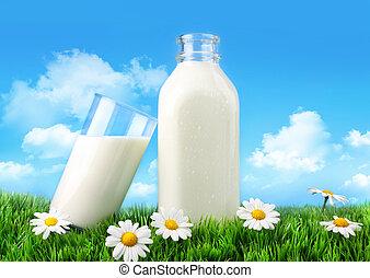 pâquerettes, bouteille lait, herbe, verre