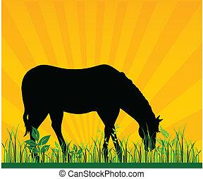 pâturage, cheval, vecteur, herbe, illustra