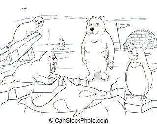 pédagogique, coloration, animaux, arctique, jeu, livre