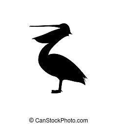 pélican, icône, conceptions, logo