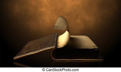 pages, livre, ancien, wi, renverser
