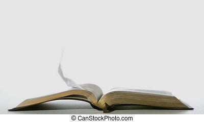 pages, tourner, vent, bible