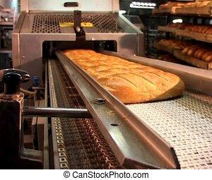 pain, cuisson, convoyeur