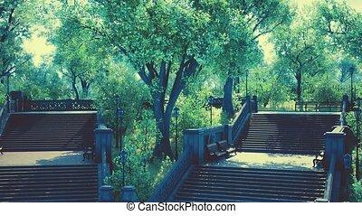 paisible, parc ville