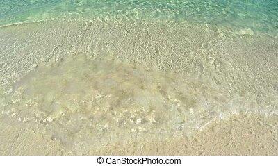 paisible, seamless, minuscule, exotique, vagues, plage, boucle
