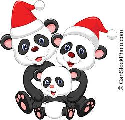 panda, porter, mignon, famille, dessin animé, r