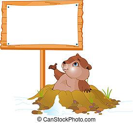 panneau affichage, marmotte amérique, jour