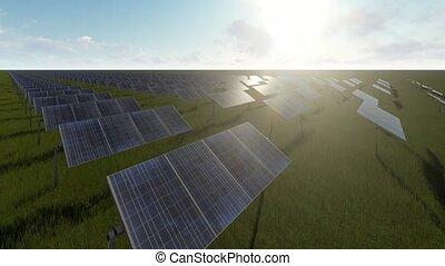 panneaux, vert, solaire, herbe