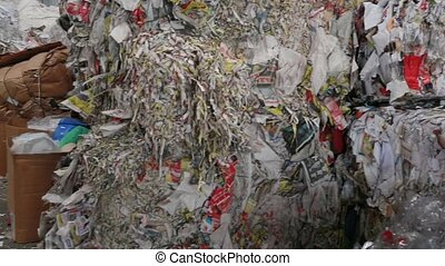 papier, carboard., recyclage, usine, grand