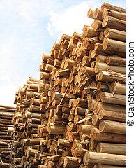 papier, tas, troncs, -, vertical