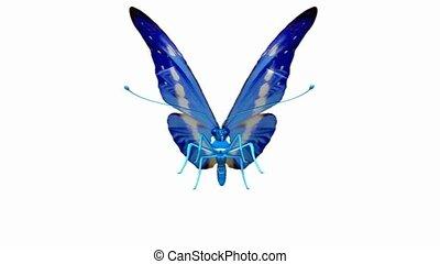 papillon, atterrissage