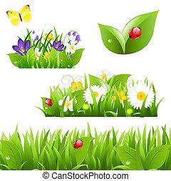 papillon, coccinelle, fleurs, herbe