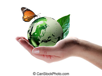 papillon, eco-amical, concept, -
